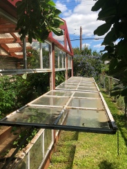 Greenhouse Open
